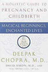 A Holistic Guide to Pregnancy and Childbirth